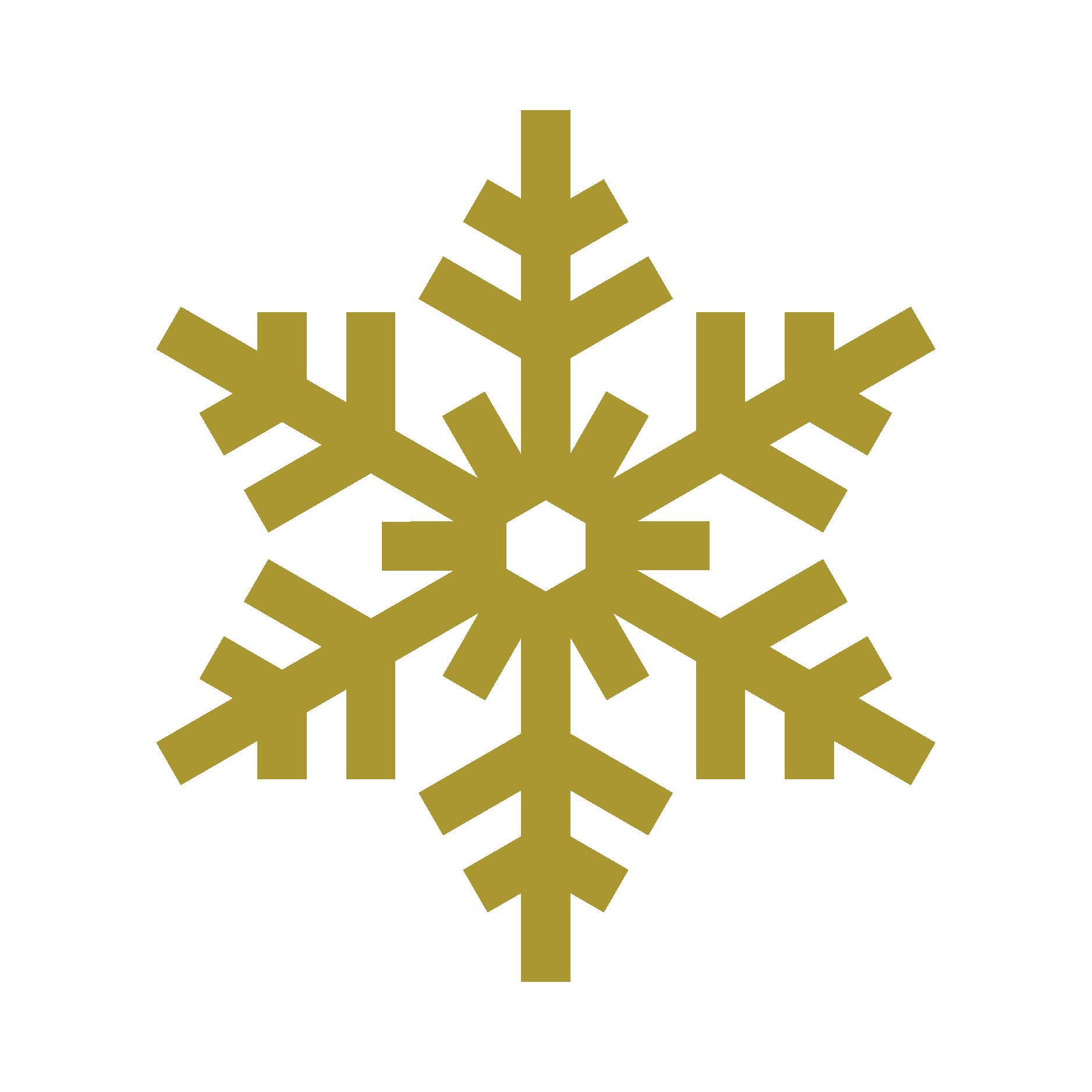 SLI_FOT_WebAssets_Snowflake 3